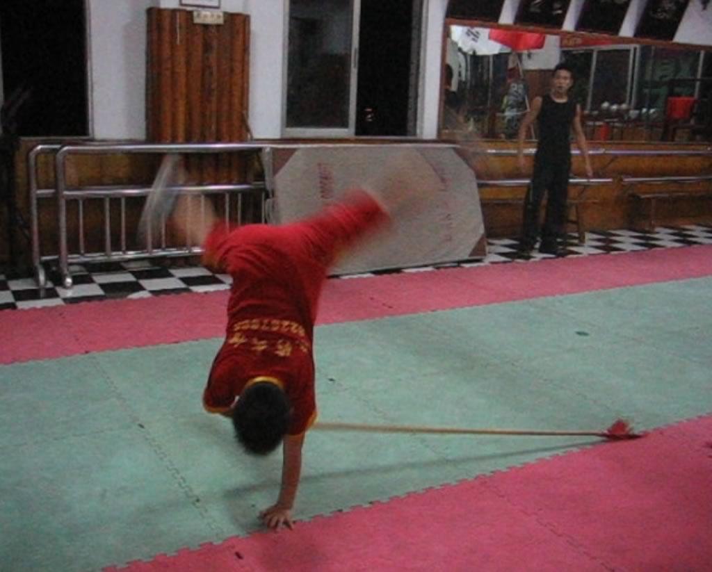 qiangshu1