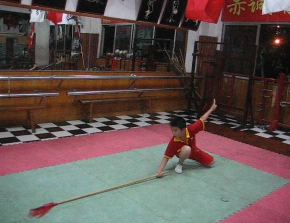 qiangshu10