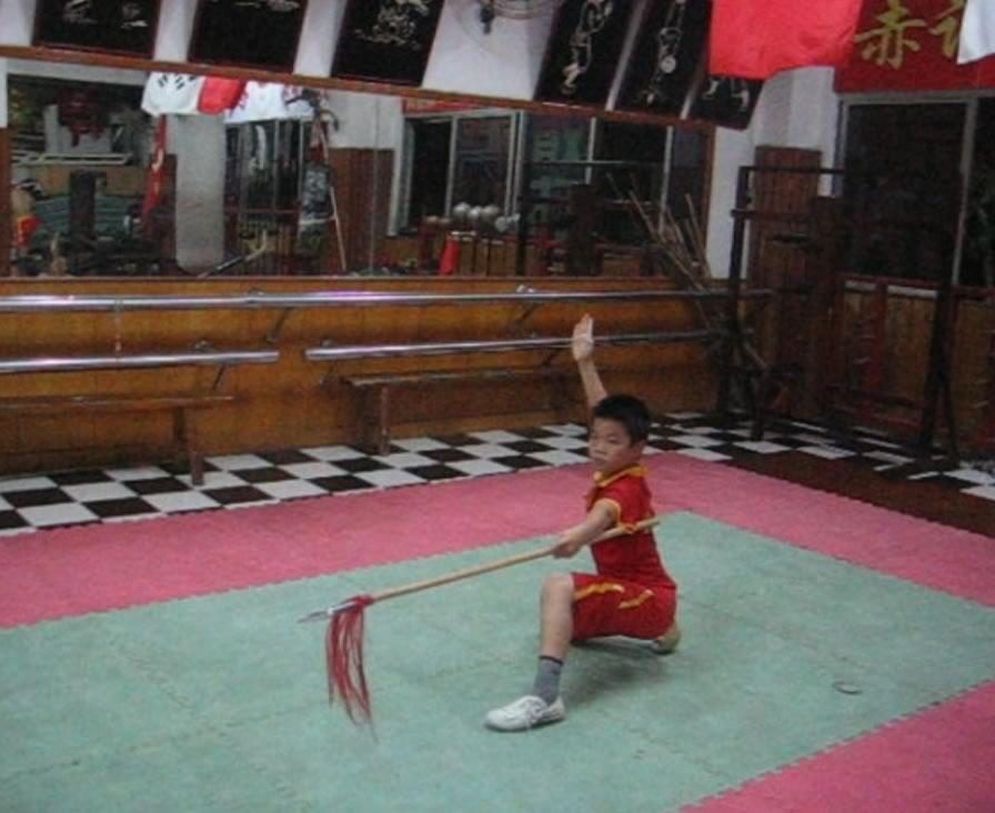 qiangshu11