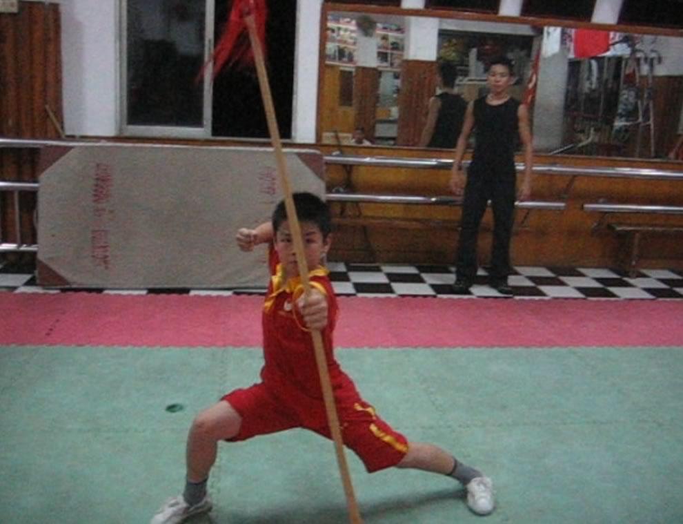 qiangshu9